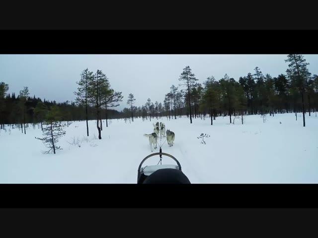 Promo video Goingnorth Zweden